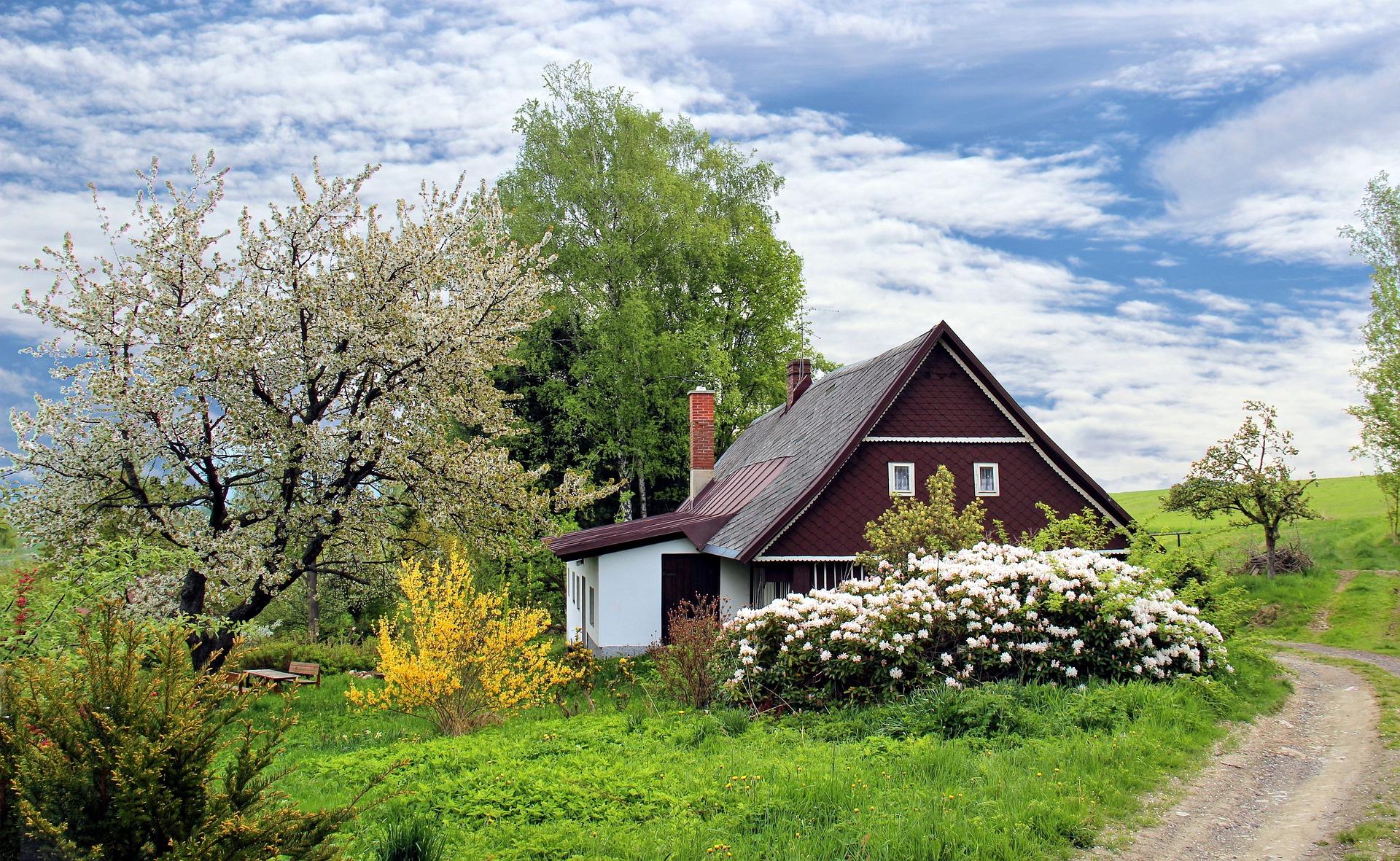 spring-2955582_1920